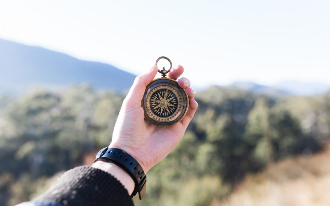 Loopbaanbegeleiding: aan welke reis was ik ook alweer begonnen?